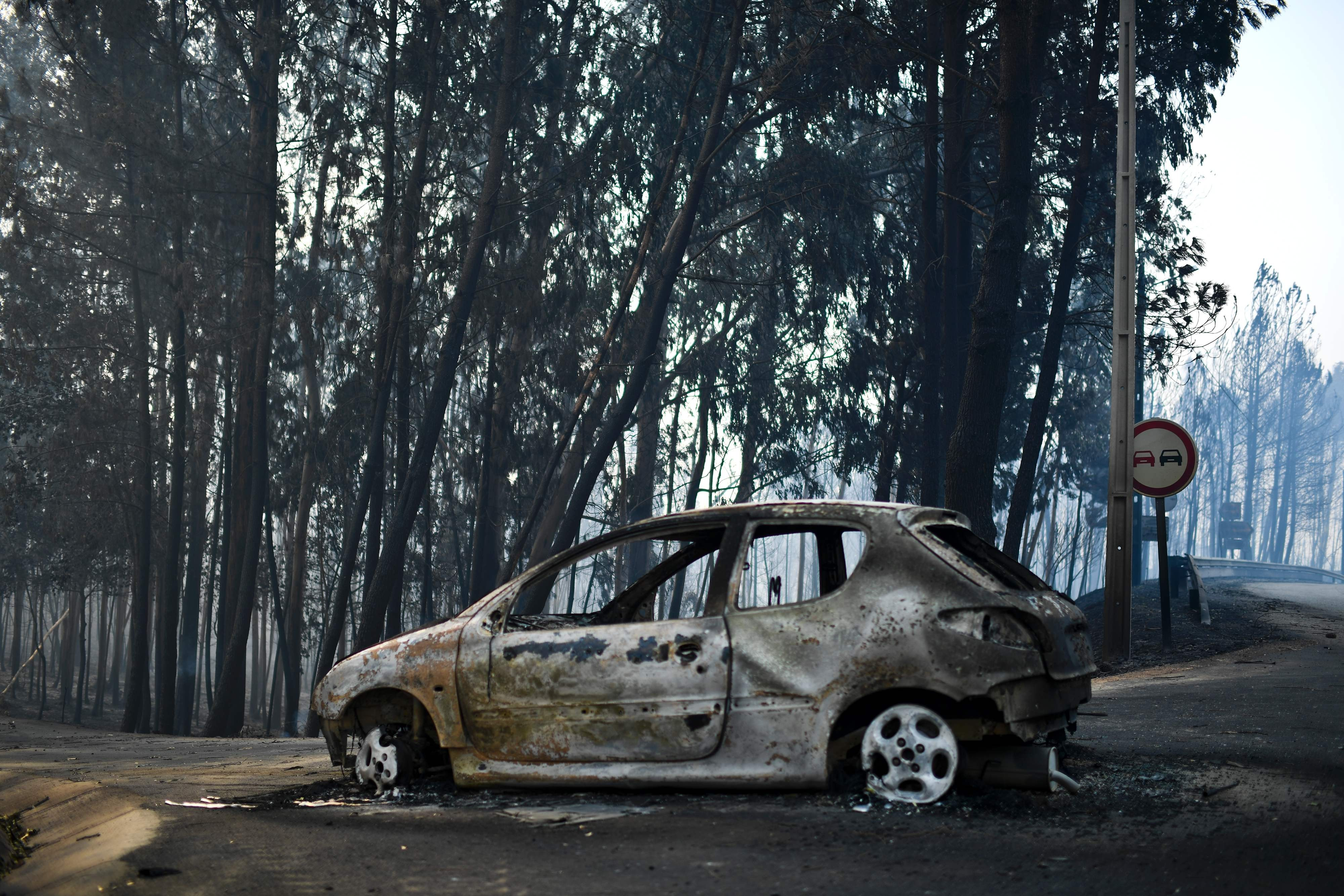 Portugal makes progress in containing wildfire amid reports a water