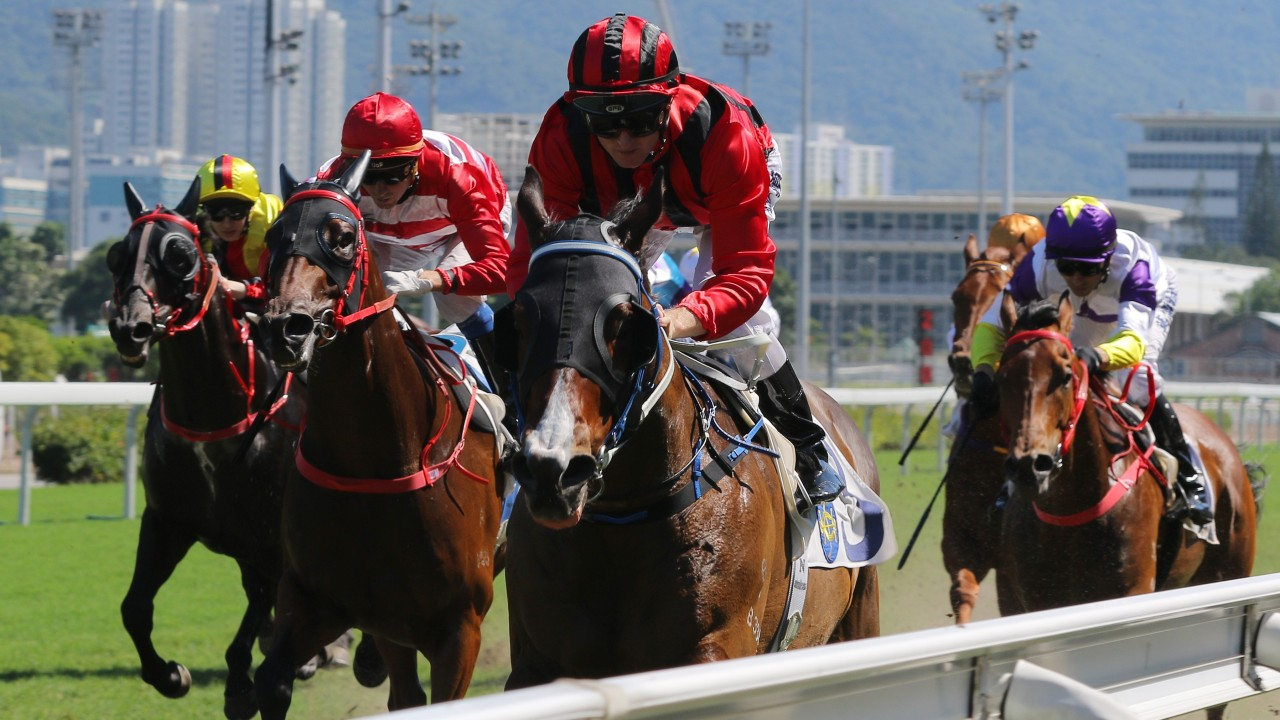Caspar Fownes-trained Montreal fighting fit for first-up Sha Tin tilt