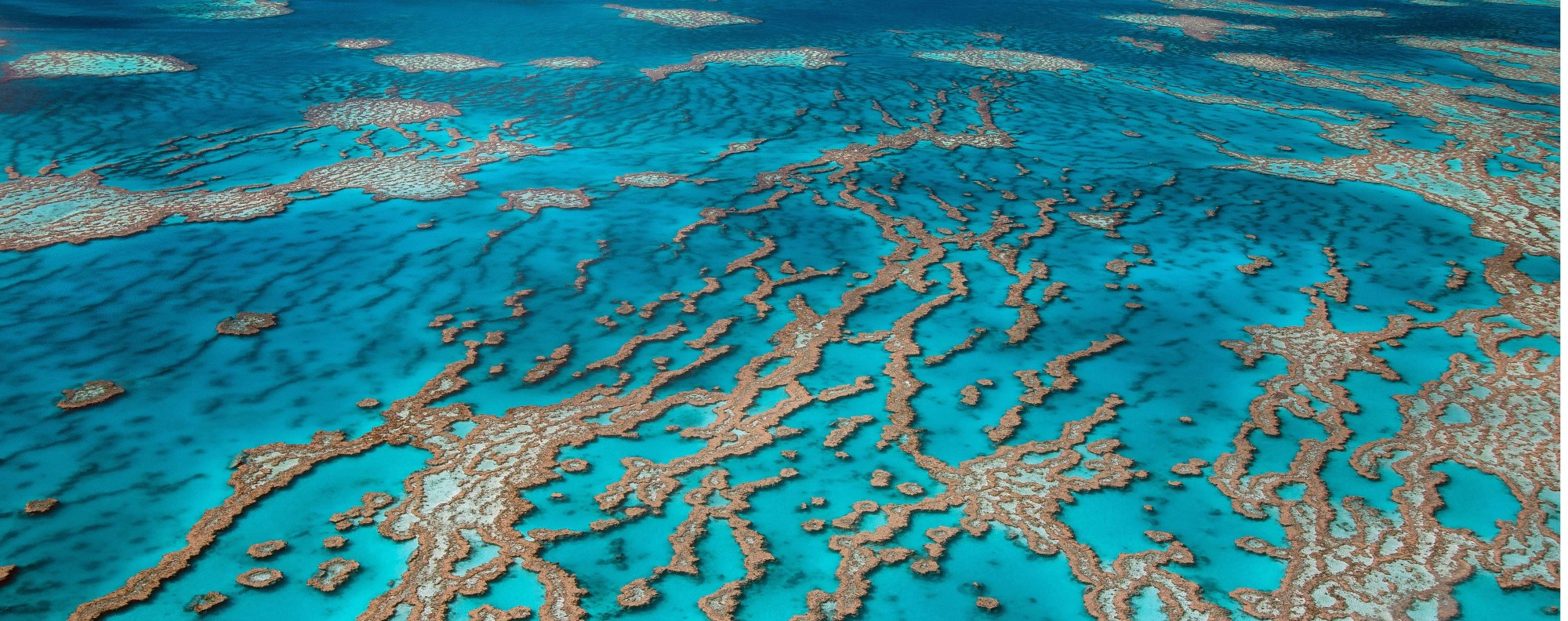 The Whitsunday Islands, in Queensland, Australia. Picture: Alamy