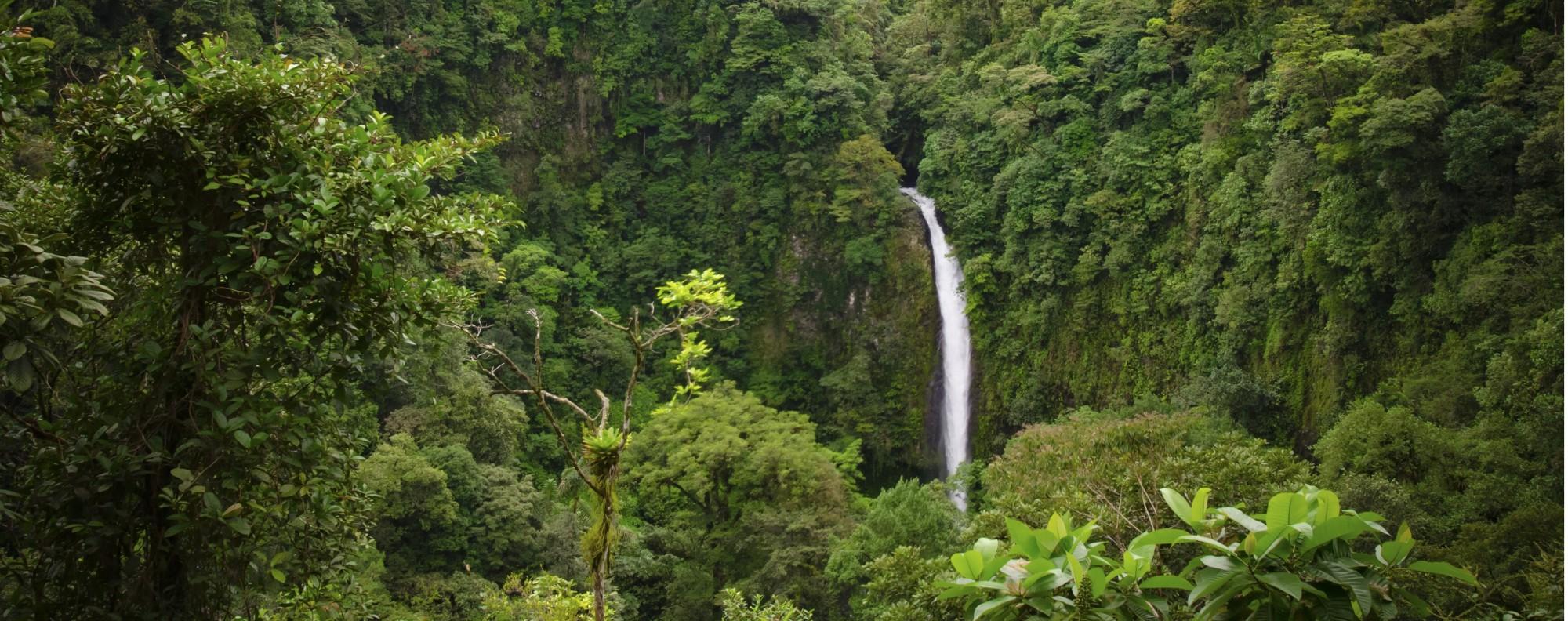 La Fortuna Waterfall, in Alajuela, Costa Rica. Picture: Shutterstock
