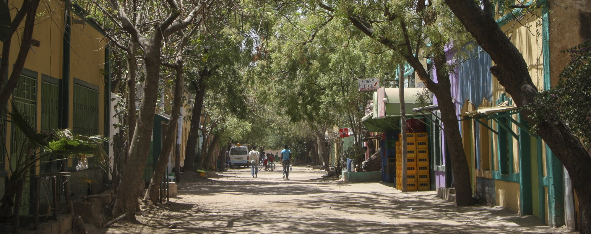 Tree-lined streets in the new part of Dire Dawa. Picture: James Jeffrey