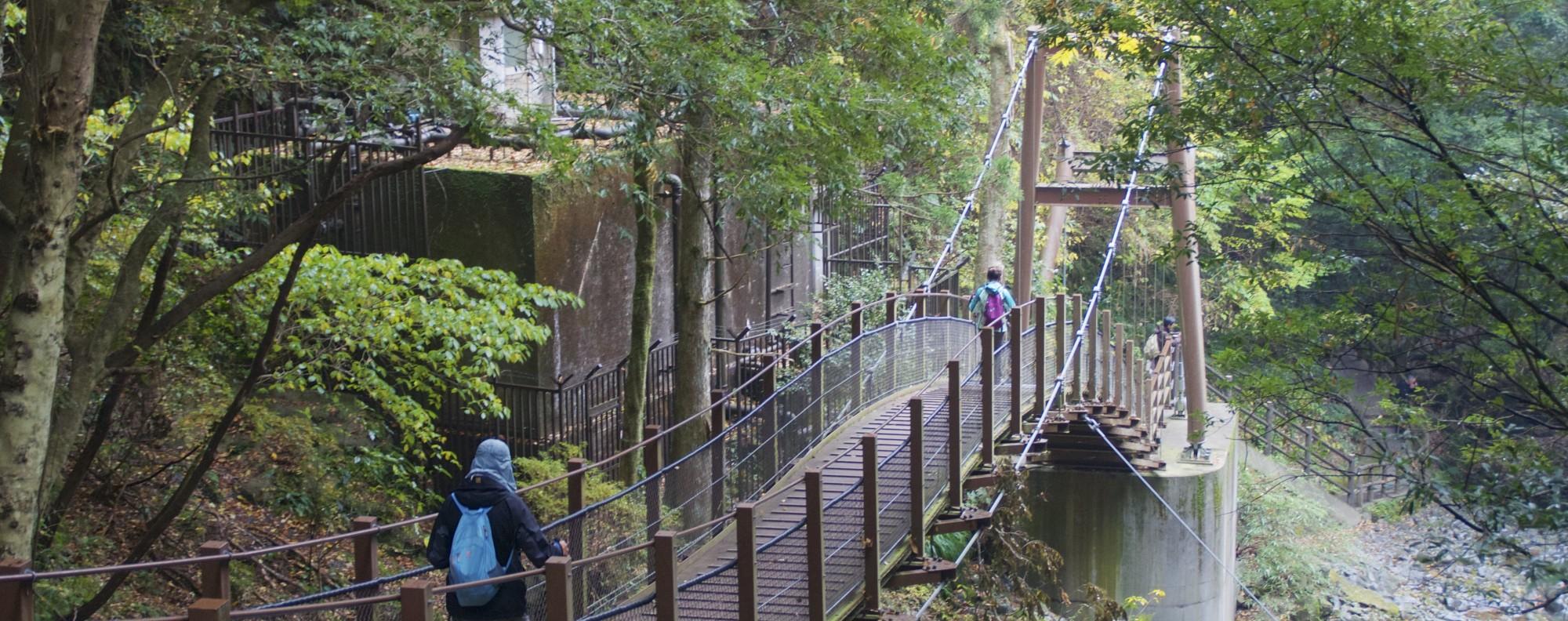 The Odoriko Trail runs down past some of the Seven Waterfalls of Kawazu.