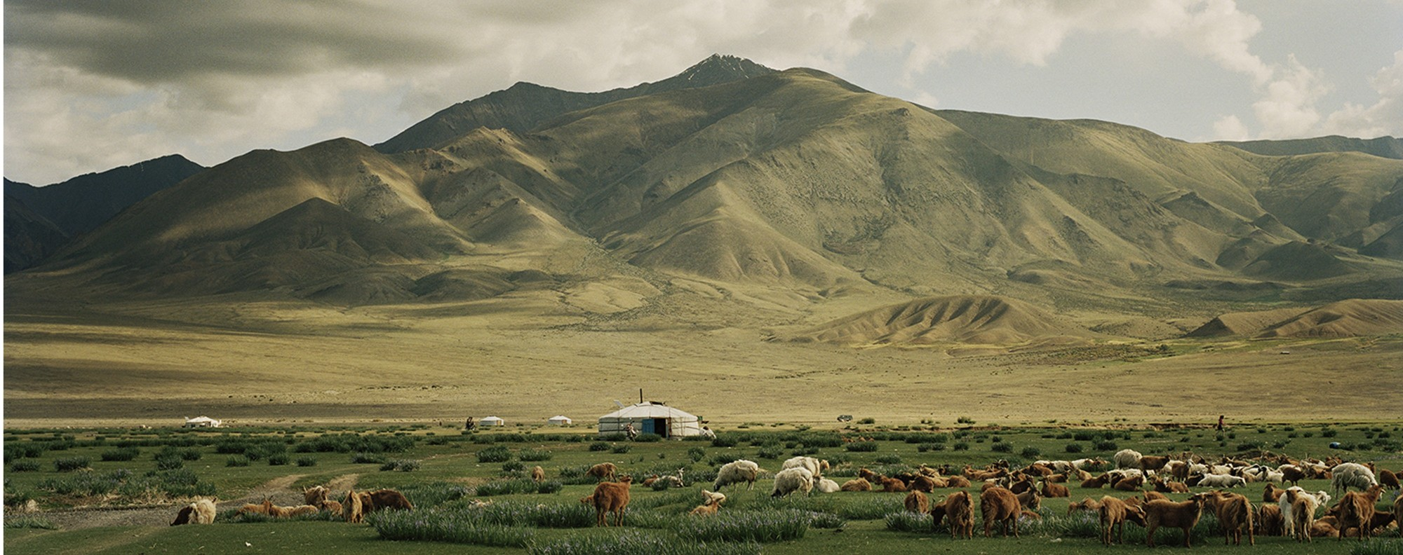 A camp close to Üüreg Lake, in Mongolia. Picture: Frédéric Lagrange