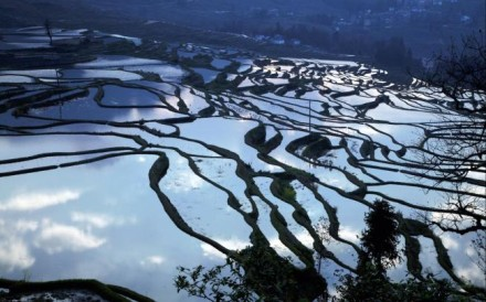 An early morning view of the Hani rice terraces from Duoyishu village.
