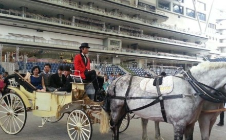 Dennis Yip and his family arrive by horse-drawn carriage for his big celebration party.
