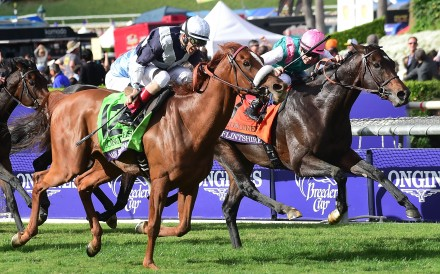 Flintshire fights back on the inside but Main Sequence proves too strong in the Breeders' Cup Turf at Santa Anita. Photo: AFP
