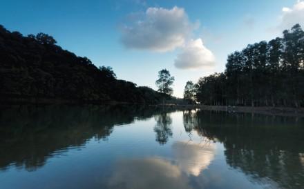 Early morning at Shing Mun River. Photos: Martin Williams