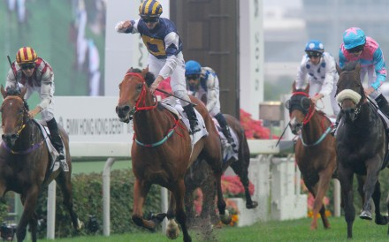 In a classy effort, Luger, ridden by Zac Purton, triumphs in the BMW Hong Kong Derby at Sha Tin. Photos: Kenneth Chan