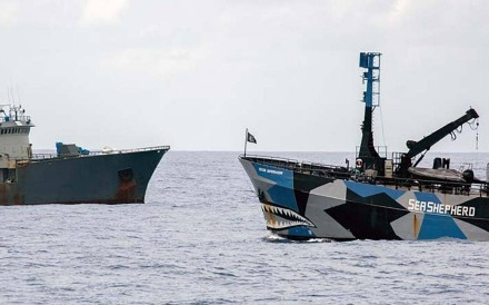 The Sea Shepherd in a stand-off with the alleged poaching vessel, Thunder, which has now been stripped of its registry by former flag-state Nigeria.Photo: Giacomo Giorgi