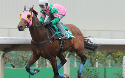 AEROVELOCITY, ridden by Zac Purton, won the barrier trial batch 7 over 1200Metres (All Weather Track) at Sha Tin. 19JAN16
