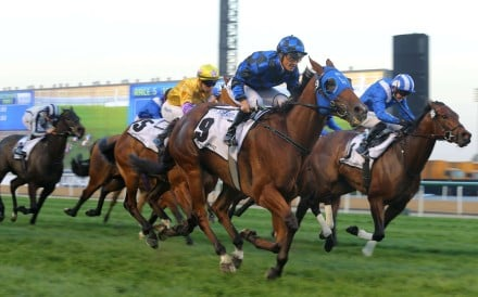 Australian warhorse Buffering, ridden by Damian Browne, wins the Al Quoz Sprint at Meydan Racecourse on Saturday, with Peniaphobia, ridden by Joao Moreira (in yellow silks), placing third. Photos: Kenneth Chan