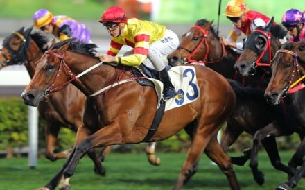 Booming Delight goes back-to-back in Class Three and now steps up in grade, and trip, on Sunday at Sha Tin in the Lung Kong Handicap. Photos: Kenneth Chan