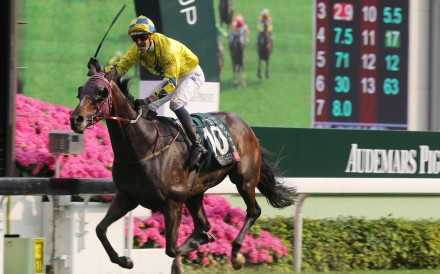 Hugh Bowman celebrates as Werther crushes his rivals in the Group One Audemars Piguet QEII Cup at Sha Tin in April. Photos: Kenneth Chan