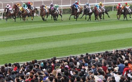 Horse racing is at the forefront as the Guangdong black market grows. Photo: David Wong