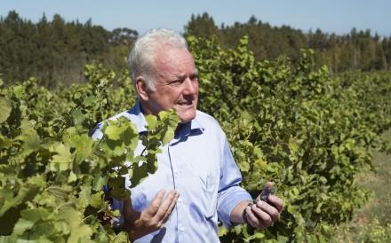 Ken Forrester at his wine estate, in Stellenbosch, South Africa. Picture: AFP