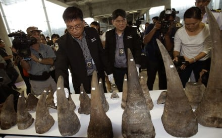 Customs officers display seized rhino horns during a press conference in Bangkok, Thailand. Photo: AP