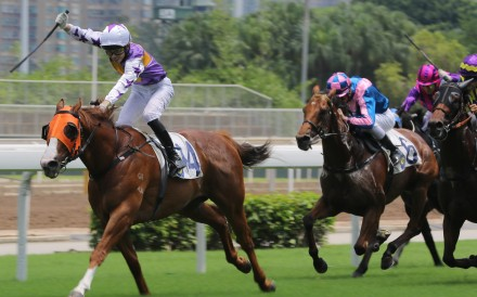 Jockey Jack Wong celebrates as he crosses the line aboard Exponents at Sha Tin on Sunday. Photos: Kenneth Chan