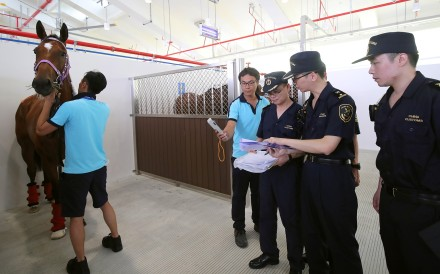 Horses get inspected by quarantine officials at Conghua Racecourse. Photo: HKJC