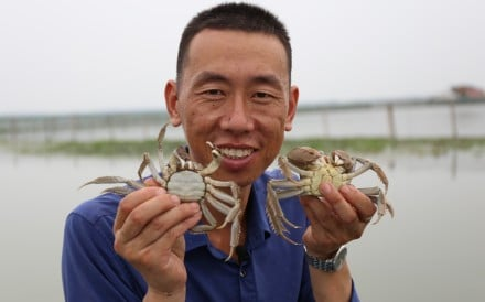 For the crab farmers of Yangcheng Lake in China's Jiangsu province, it's the excellent water quality there that makes their crustaceans the best
