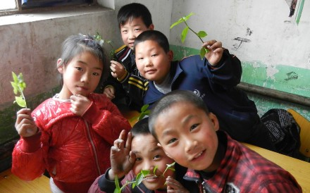 Migrant children learn about plants in a class on the environment. Even though Chinese law mandates all migrant children be given access to education, some schools impose additional requirements for them to enrol, in an effort to make access harder. Photo: JGI China