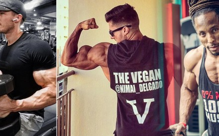 Vegan body-builders who are big and beefy – without any beef in their diet – include Torre Washington, Patrik Baboumian and Nimai Delgado.