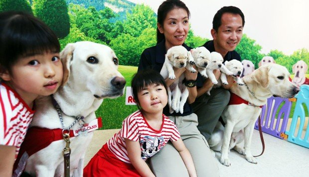 First Hong Kong-born guide dogs set to help meet huge demand from the visually impaired