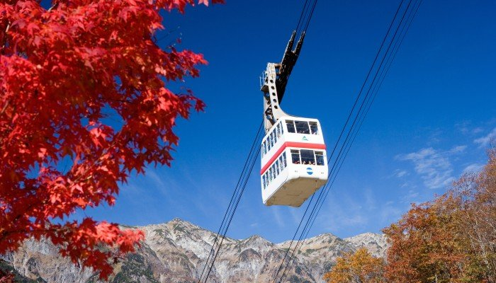 'Branching Out' To New Leaf-Peeping Destinations