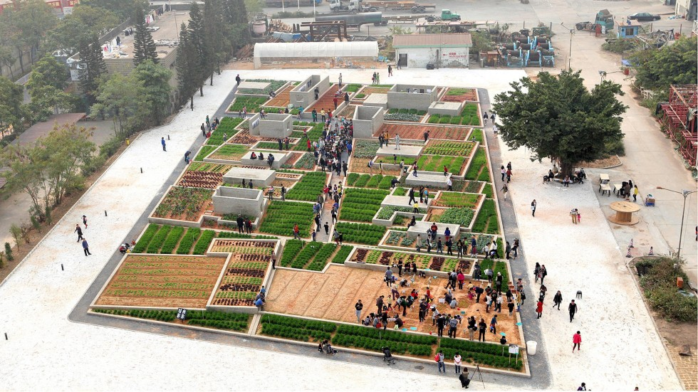 Image result for urban farm