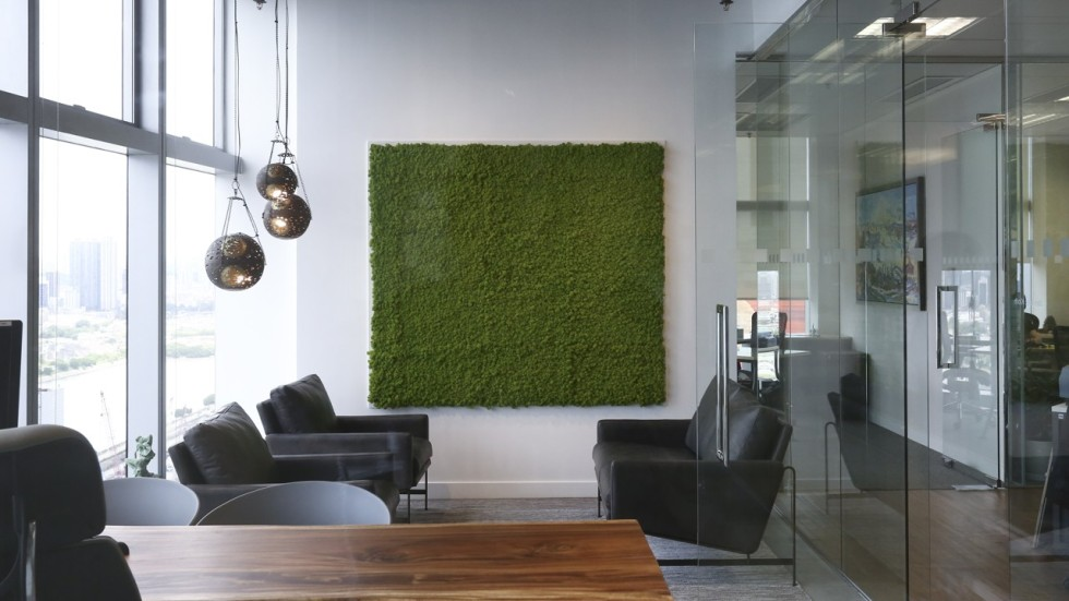 Need More Green In Your Life It May Be Time To Bring Moss Indoors