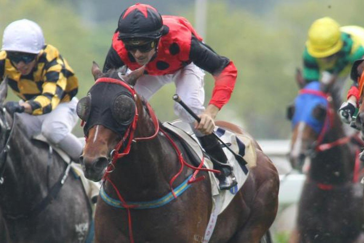 Holyangelholy is drawn ideally and can continue his winning ways.