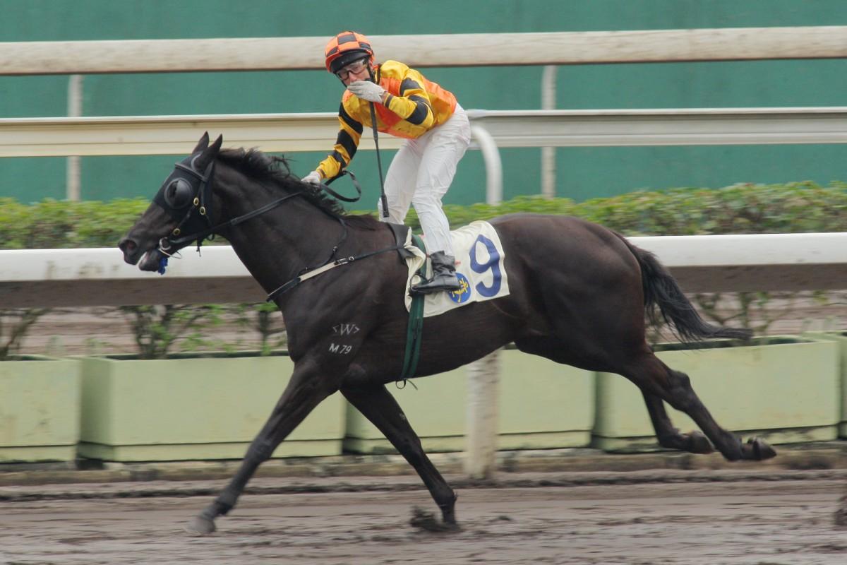 Tips on getting to grips with Hong Kong racing | HK Racing