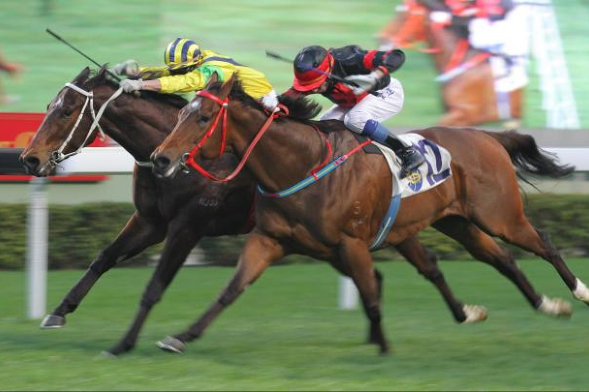 Douglas Whyte throws everything at Sea Dragon (outside) as the young gelding shows plenty of fight to nail Bullish Friend (Matthew Chadwick) in front of a massive Sha Tin crowd yesterday. Photo: Kenneth Chan