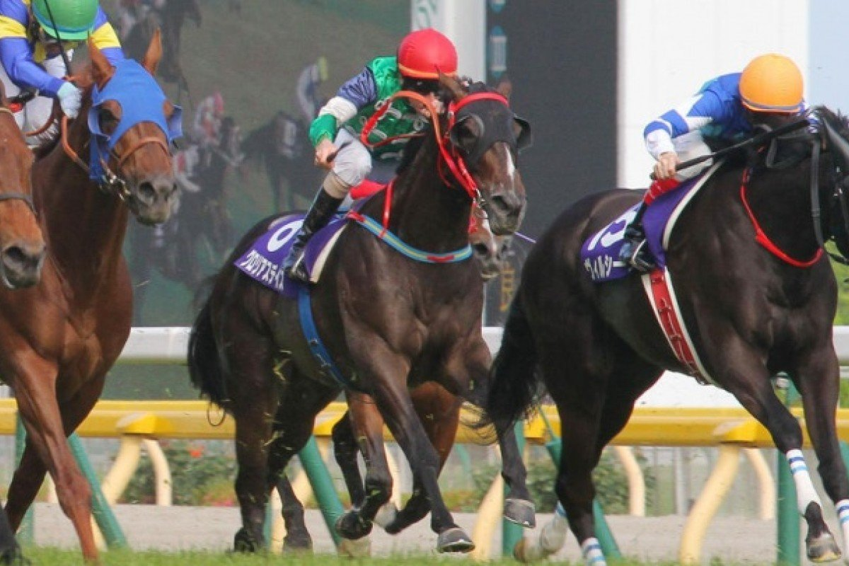 Glorious Days (outside) keeps battling away to finish 11th after bungling the start. Photo: Kenneth Chan