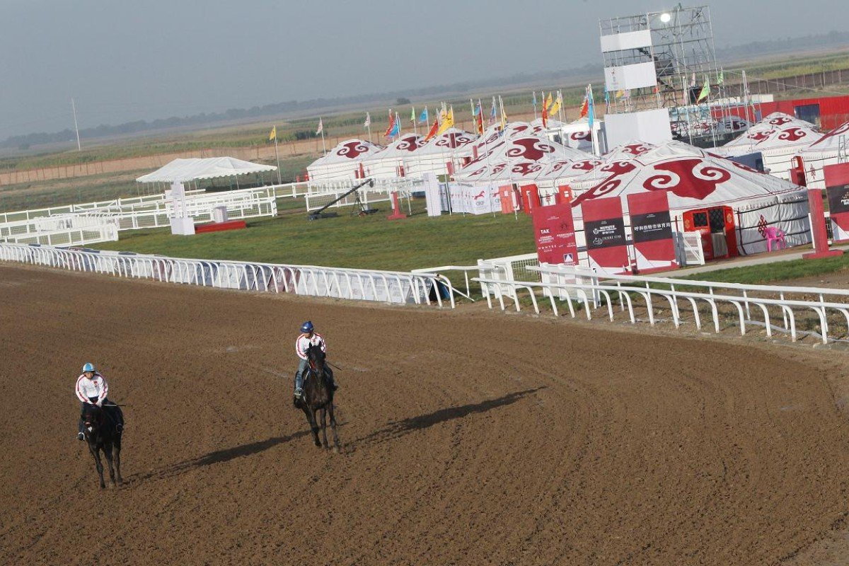 Horses work on the sand track today in preparation for Saturday's meeting.
