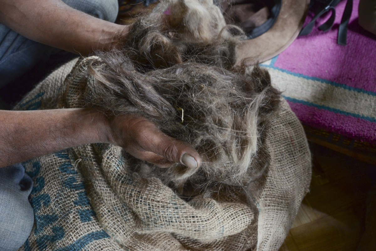 A sack of yak wool in the Spiti Valley.