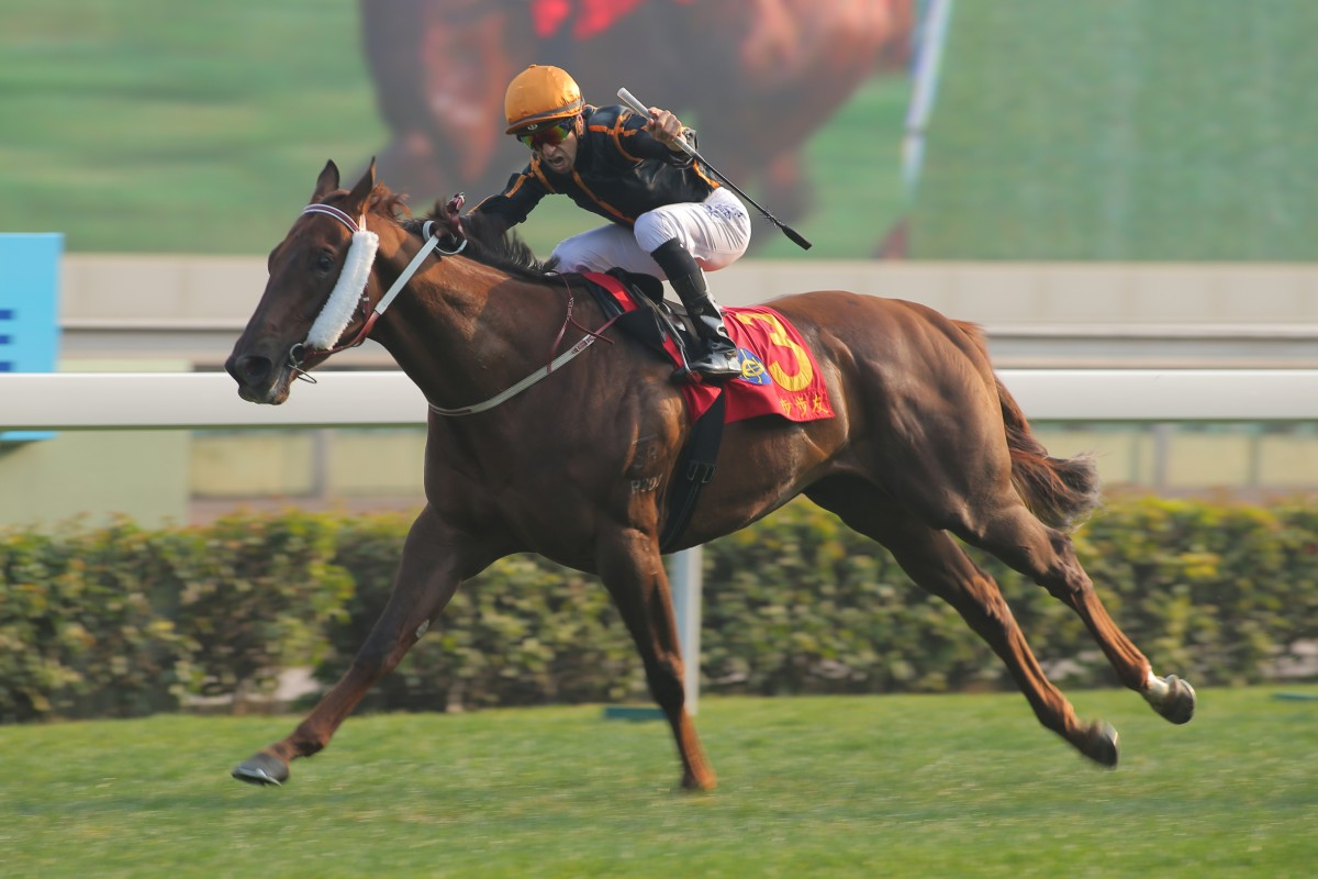 Able Friend was dominant in the Classic Mile, and a repeat will see him go very close in the Hong Kong Derby.