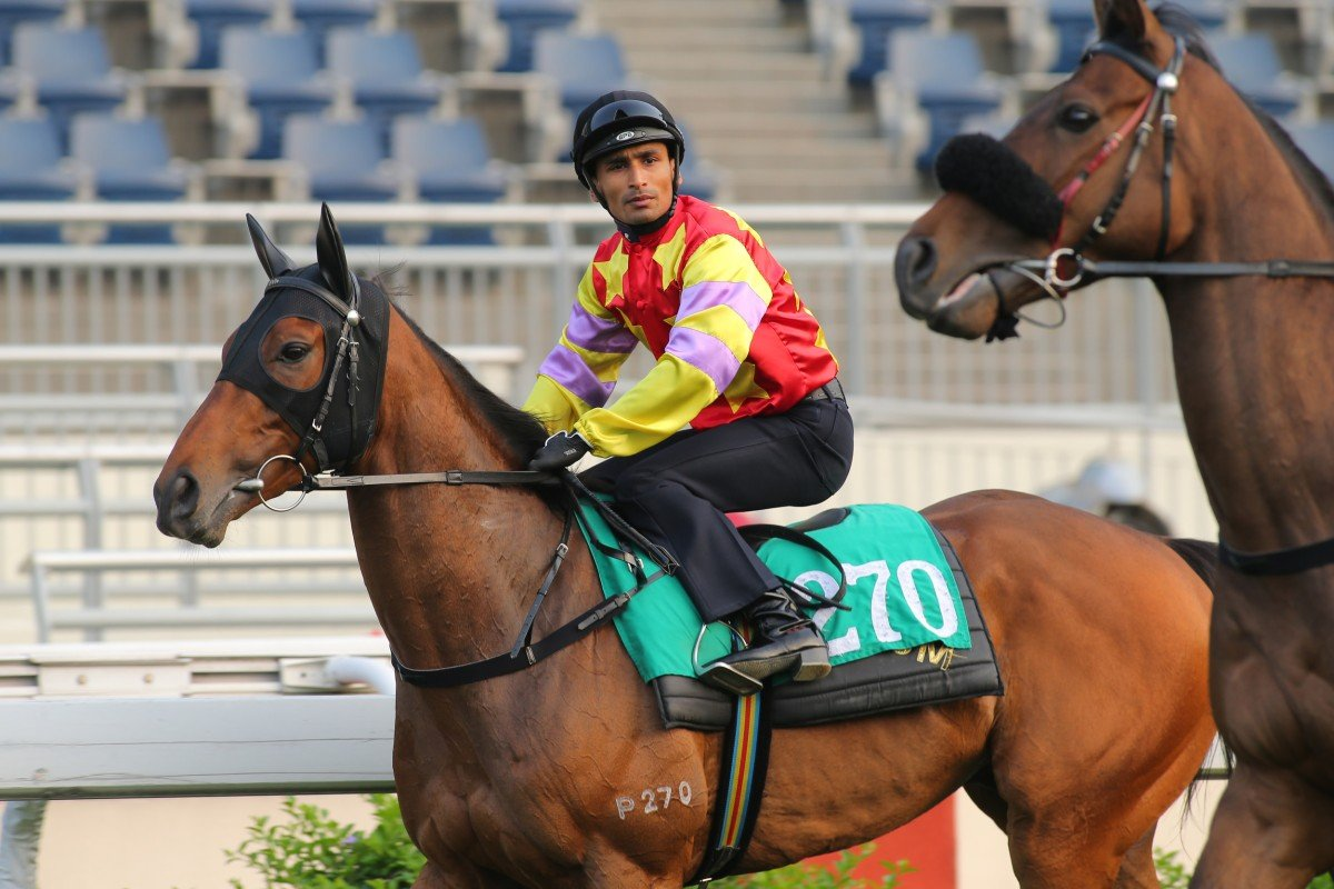 Karis Teetan - aboard Designs On Rome at Tuesday's trials - has had a big season so far, and plum opportunities are set to keep coming his way. Photo: Kenneth Chan