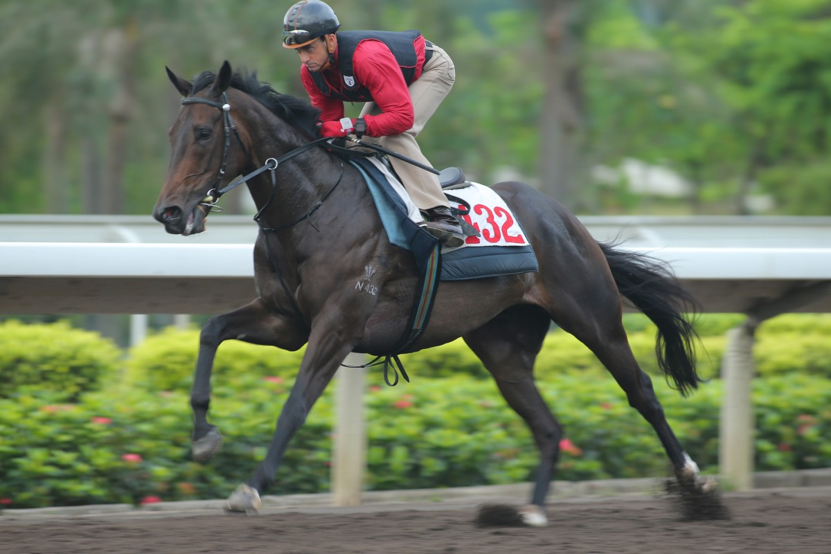 Karis Teetan aboard Amazing Always win the Class Five over 1200m at Sha Tin on September 8, 2013. Photo: Kenneth Chan