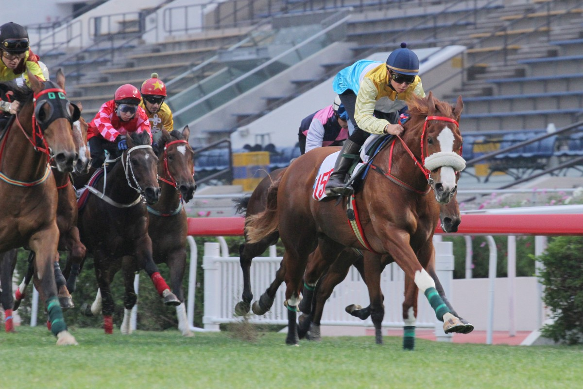 Phaedo wins a barrier trial over 1,000m on the turf at Sha Tin in December 2011. He never settled well into racing. Photo: Kenneth Chan