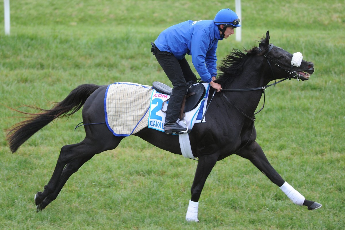 Godolphin-trained, Melbourne Cup contender Cavalryman was one of two Saeed bin Suroor chances in the race. Photo:  EPA