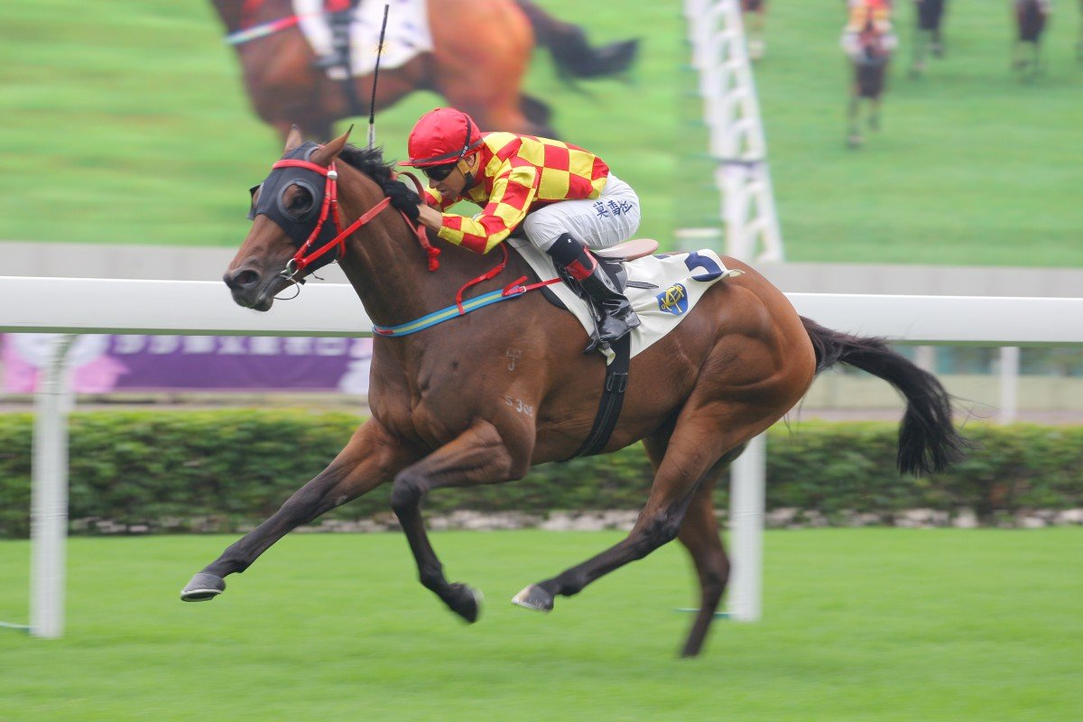 Shining Champion (Joao Moreira) races away for a comfortable victory, but will be kept to sprint trips. Photo: Kenneth Chan