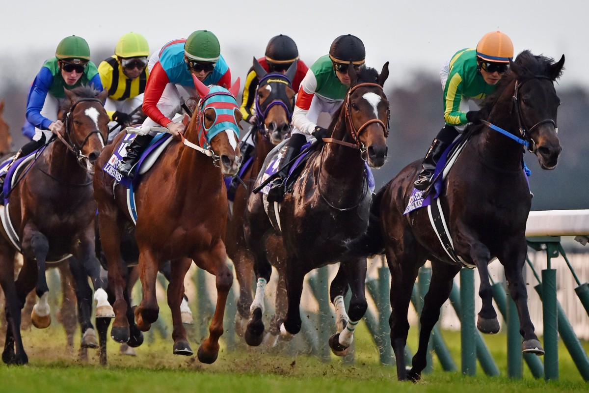 Sunday's Japan Cup raised a number of queries. Photo: AFP