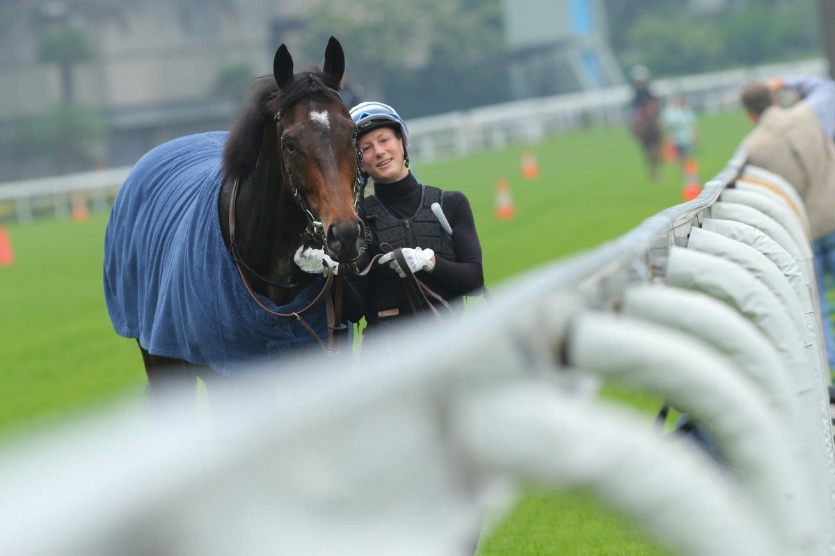 Work rider Annelie Ackerman walks Flintshire back to the stable after a steady gallop in readiness for Sunday's HK$16.5 million Longines Hong Kong Vase at Sha Tin. Photos: Kenneth Chan