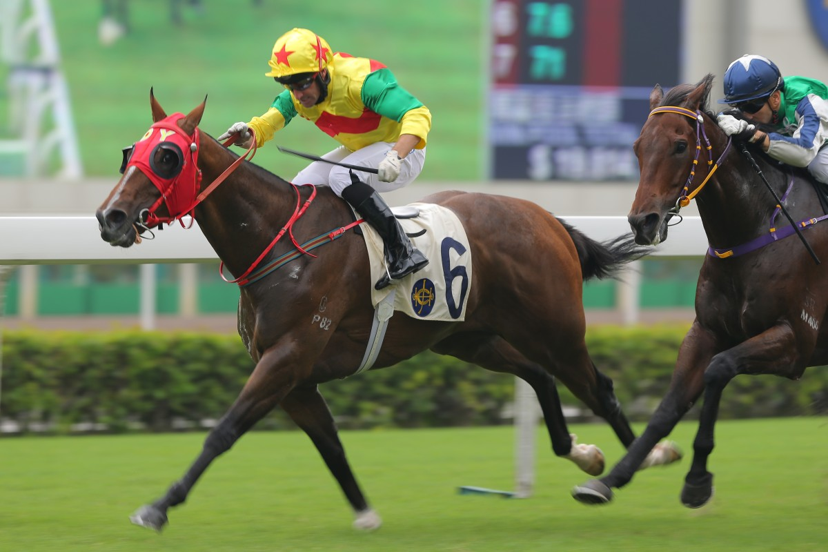 Joy Together races away with blinkers on to score for Neil Callan and Dennis Yip. Photo: Kenneth Chan