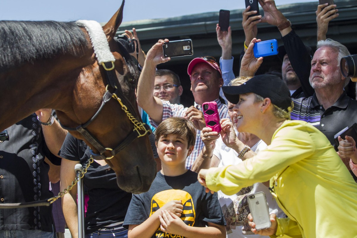 Triple Crown champion American Pharoah will race for the last time at the  US$5 million Breeders' Cup Classic. Photos: AP