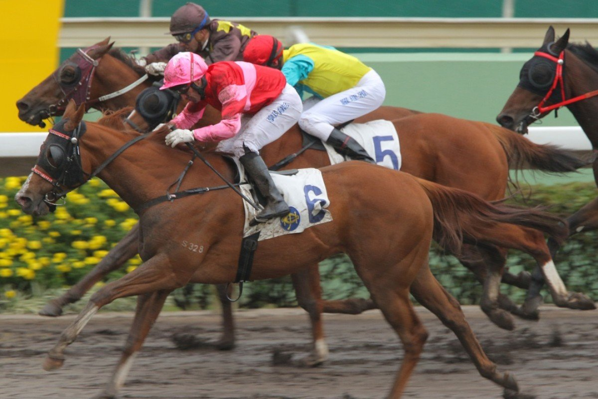 True Comment has the last word for Neil Callan on the all-weather track. Photos: Kenneth Chan