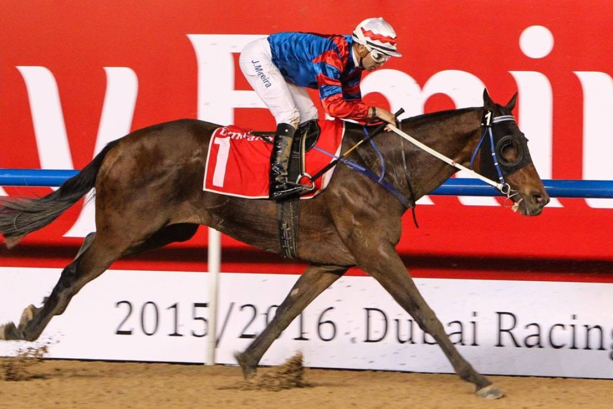Gun Pit finishes second in the Al Maktoum Challenge Round Three, all but guaranteeing him a spot in the US$10m Dubai World Cup on March 26. Photo: HKJC