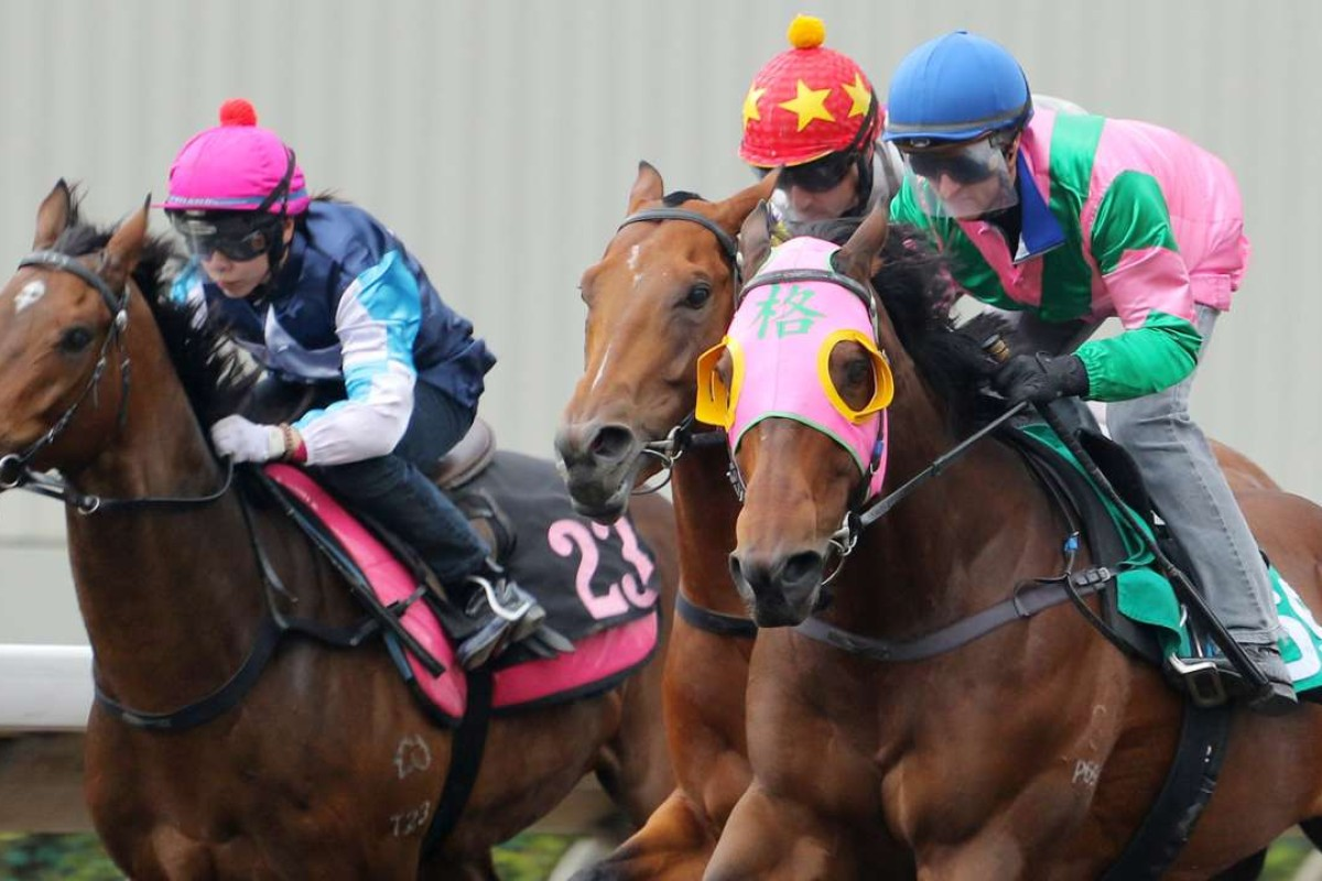 Aerovelocity (right) races up for a narrow, unconvincing victory in a barrier trial on Tuesday. Photo: Kenneth Chan