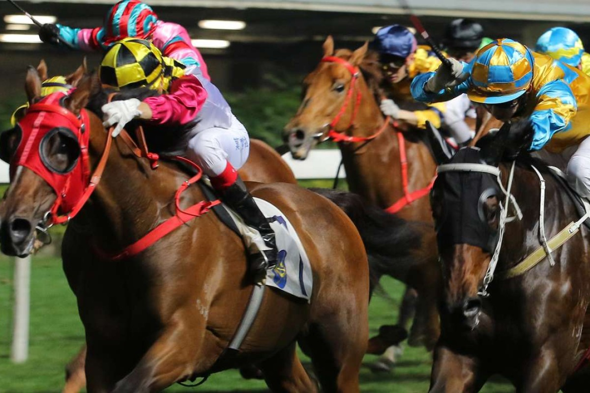 Lucky Profit looks set to win again in the opening leg of the Triple Trio, with Mr Kool his main danger. Photo: Kenneth Chan