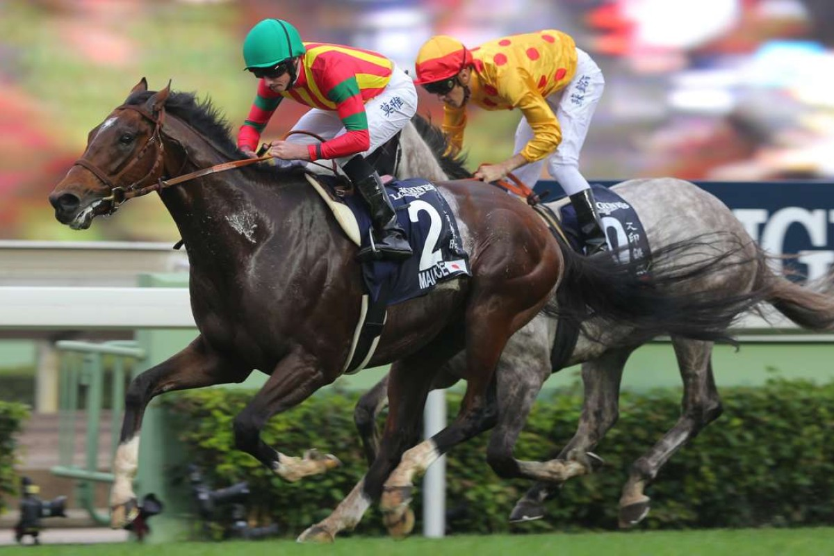 Maurice holds off Giant Treasure to win the Hong Kong Mile in December. The pair clash again in the Champions Mile. Photo: Kenneth Chan